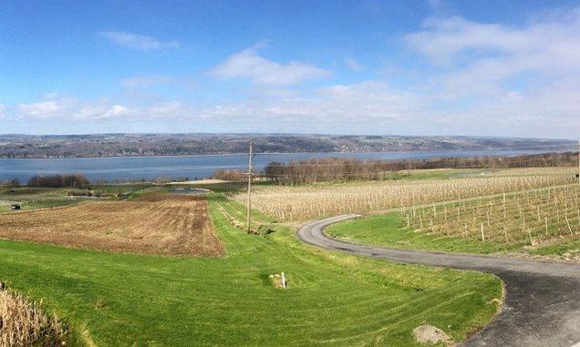 Vineyards to Visit on the Finger Lakes' Seneca Lake Wine Trail