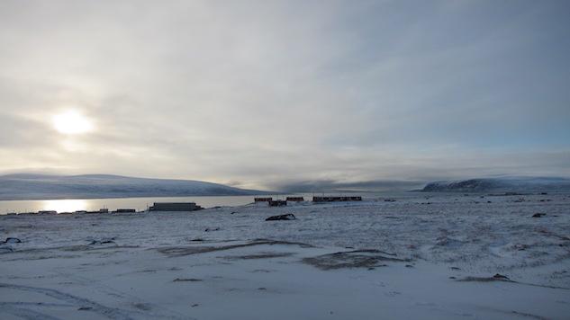 Schreiber Arctic 2 (1).JPG
