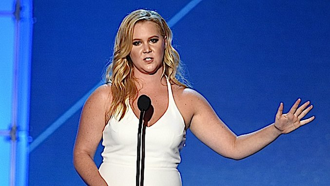 An Exhaustive Primer on the Amy Schumer Scandal (Yes, She's Probably Guilty of Plagiarism)