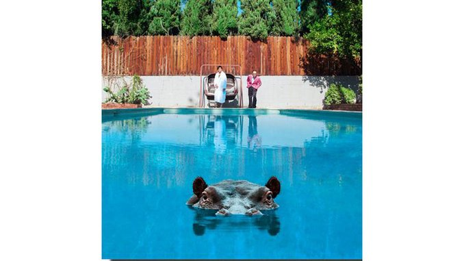 Sparks: <i>Hippopotamus</i> Review