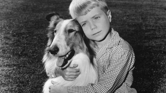The 10 Greatest TV Animals, from <i>Lassie</i> to <i>Lost</i>
