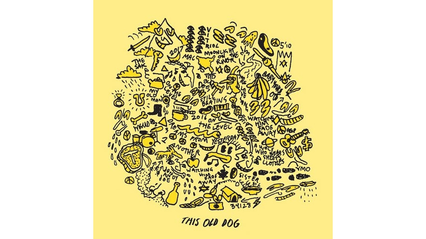 Mac DeMarco: <i>This Old Dog</i> Review