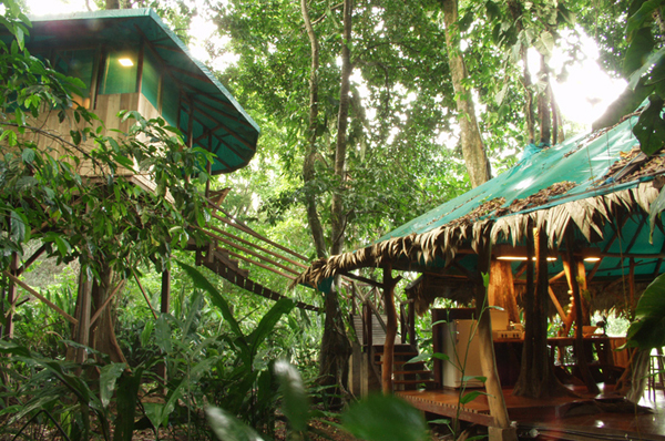 7 tarzan worthy tree house hotels travel lists for Tree house costa rica