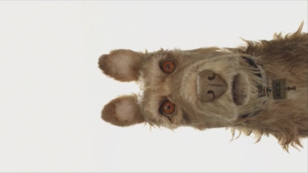 Wes Anderson Announces His Next Animated Film, <i>Isle of Dogs</i>