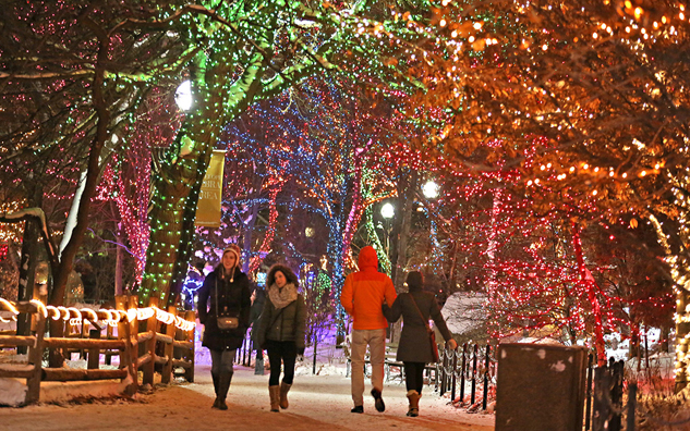 Chicago Christmas.The Bucket List 7 Holiday Must Dos In Chicago Paste