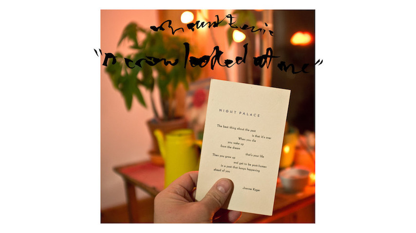 Mount Eerie: <i>A Crow Looked At Me</i> Review