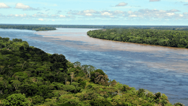 <i>EarthRx:</i> The Amazon Is Not a Wilderness, It's an Advanced Permaculture Food Forest