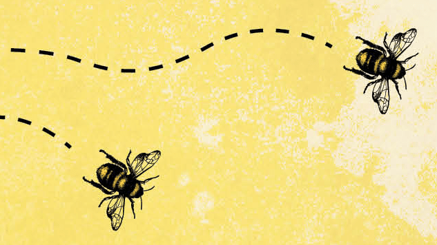 Exclusive Cover Reveal + Excerpt: Candice Montgomery Tackles Gentrification and Beekeeping in <i>By Any Means Necessary</i>