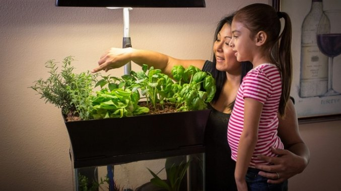 Kickstarter Weekly: Turn Your Aquarium Into a Garden, PROOF Your Adventures and More