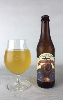 Dogfish Festina (Custom).jpeg