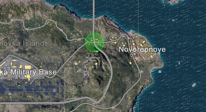 1 west of novorepnoye.jpg