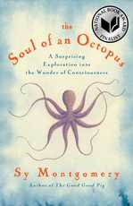 SoulOfOctopus.jpg