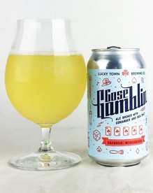 lucky town gose gomblin (Custom).JPG