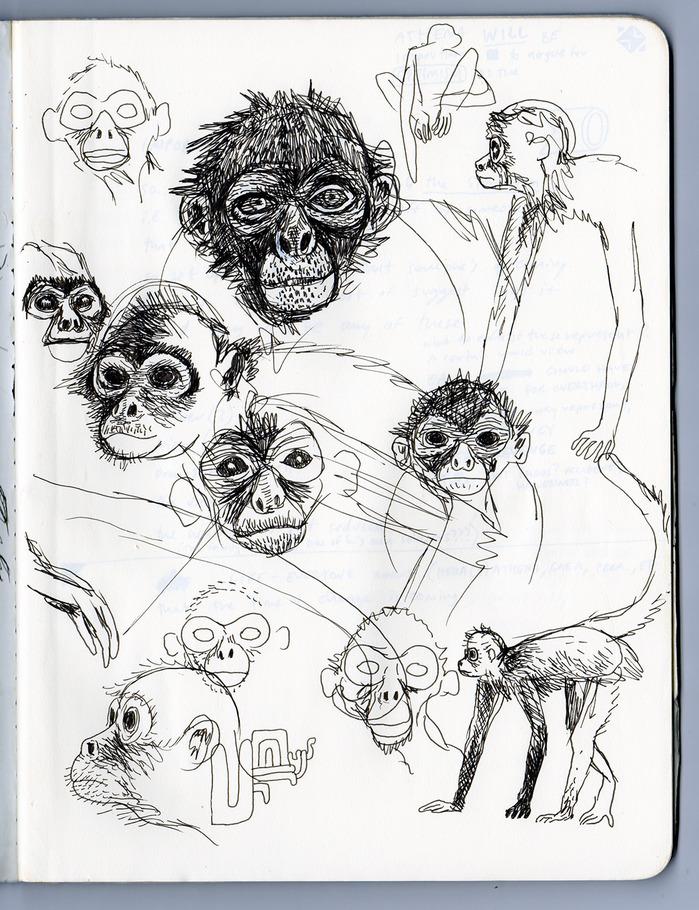 sketch01Monkey.jpg