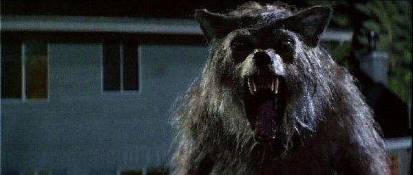 The 25 Best Werewolf Movies of All Time :: Movies :: Best