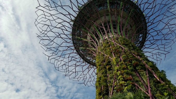 Virtual Tour of Singapore's Gardens by the Bay