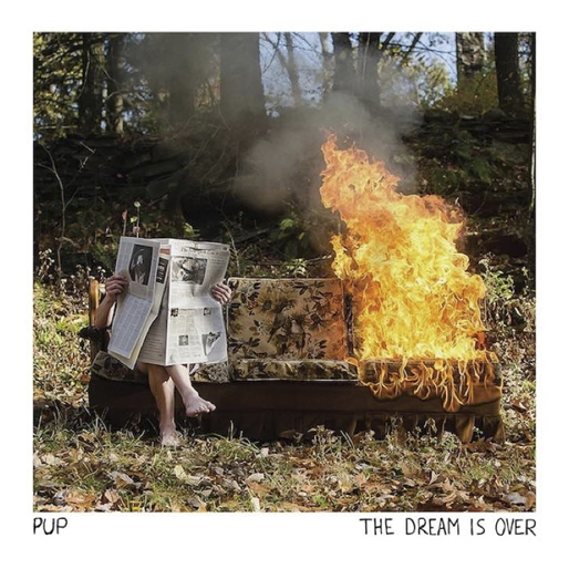 best-albums-2016-pup - the dream is over.jpg