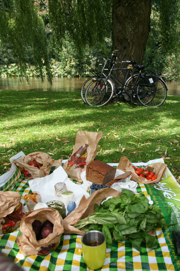 10 Must Haves For A Perfect Bike Picnic Food Lists