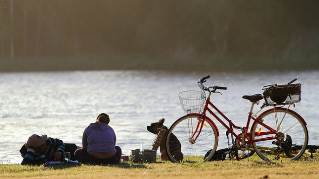 10 Must-Haves for a Perfect Bike Picnic