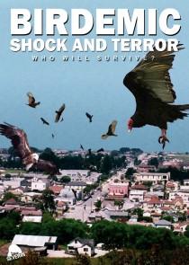 birdemic-shock-and-terror.24938 (Custom).jpg
