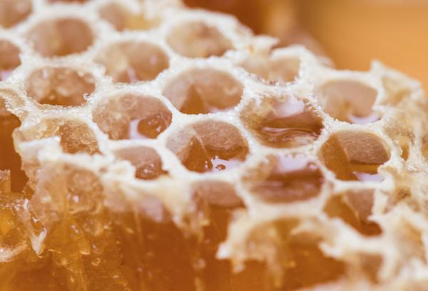 bl honeycomb.png