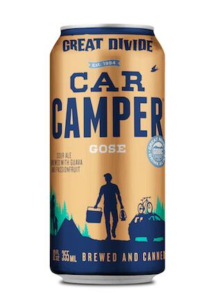 car camper.jpg