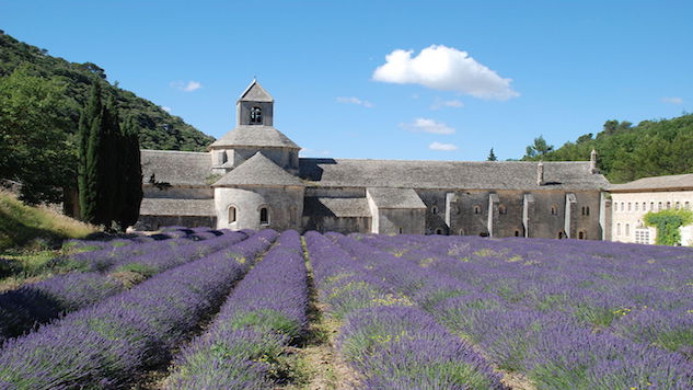 castle and lavender.JPG