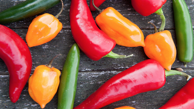 Some Like It Hot: <i>The Chile Pepper Bible</i>