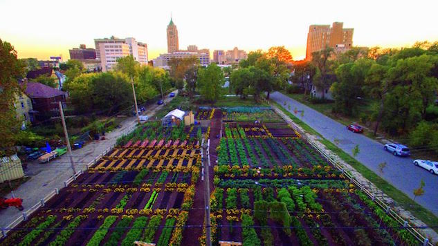 "EarthRx: Detroit's New ""AgriHood"" is the Future of Urban Planning"