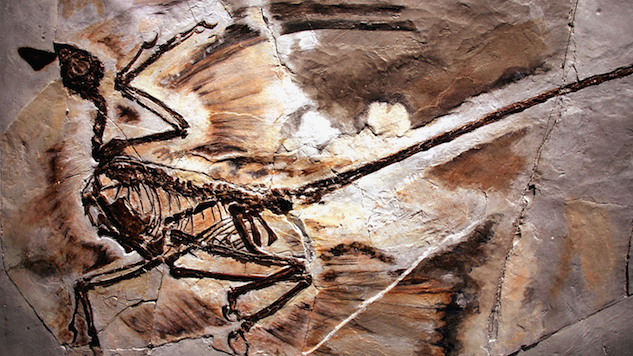 Dinosaurs Have Been Around Longer Than We Thought—About 15 Million Years Longer
