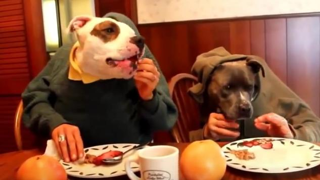 Table for Fido: 6 Restaurants Featuring Menus for Dogs