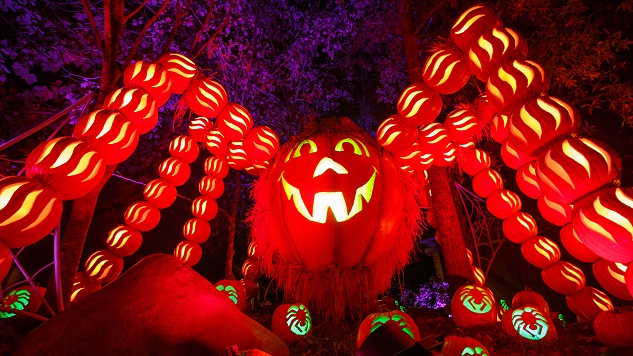 Dollywood's Great Pumpkin Luminights Serves Up Folksy Halloween Fun