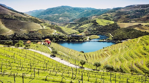 52 Wines in 52 Weeks: Understanding Wines of the Douro Valley