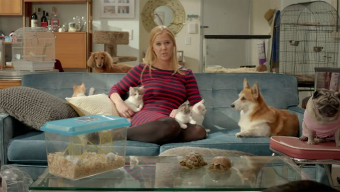 """<i>Inside Amy Schumer</i> Review: """"Down For Whatever"""""""