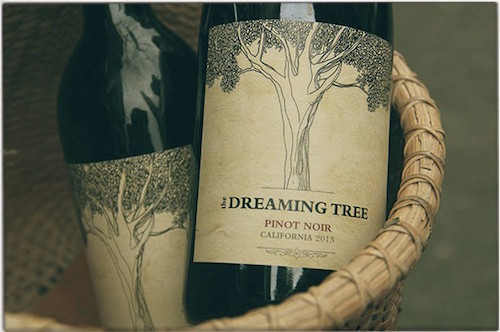 dreaming tree interior.jpg