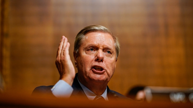 The Long, Tragic, Stupid, Self-Inflicted Fall of Lindsey Graham