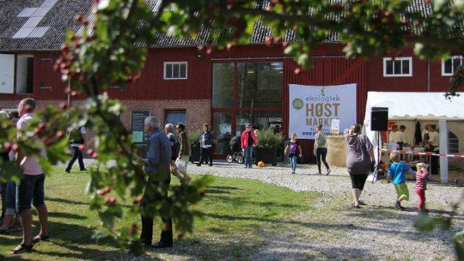 This Danish Farmer Converted 2,000 Acres to Organic Farmland