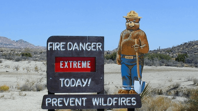 Sustainability Report: After the Fire Season