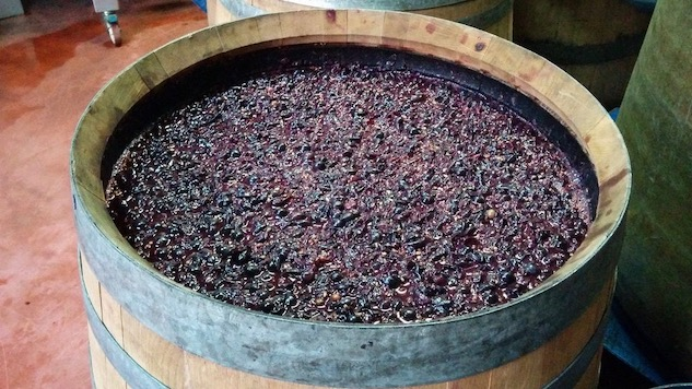 Wine of the Week: Carignan is a Heritage Grape that Might Withstand Global Warming