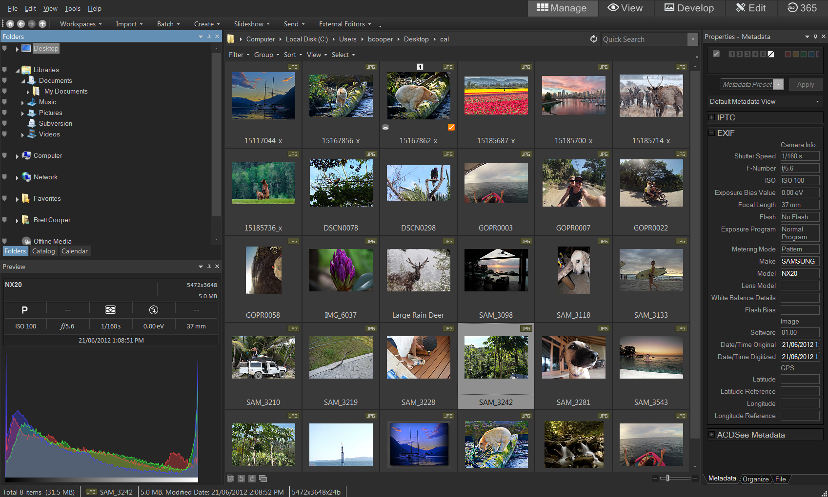 Picasa Is Dead Here Are 5 Free Alternatives For Online Image Software Paste