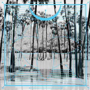 Four Tet Announces New Album, <i>Pink</i>