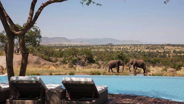four_seasons_safari_lodge_pool.jpg