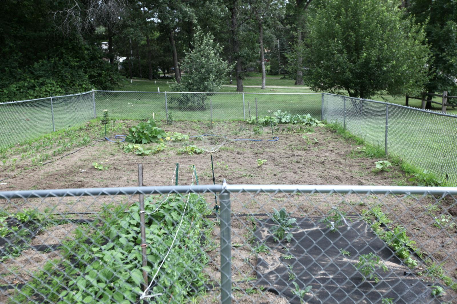 garden smart.jpg