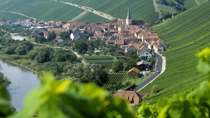 Everything You Need To Know About German Wine