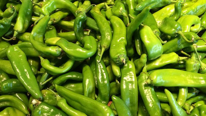The Great Green Chile Debate: Colorado vs. New Mexico