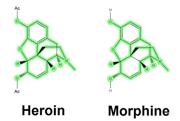 heroin vs morphine.jpg