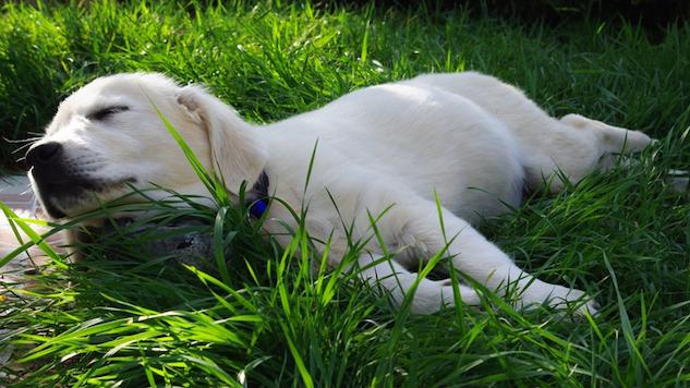 5 Ways to Combat Fatigue