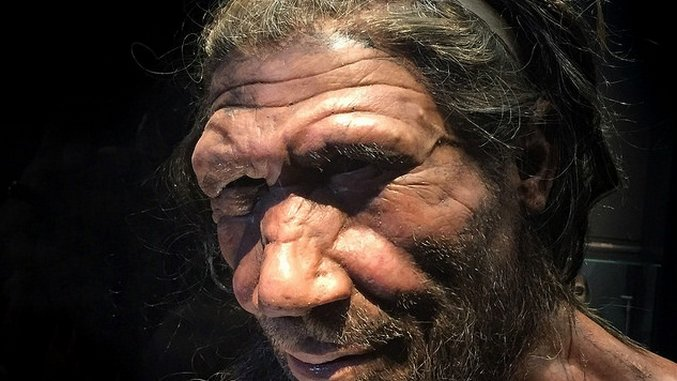 Human Ancestors May Have Mated with Neanderthals