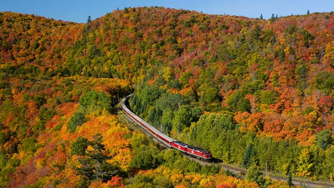The Best Fall Foliage Destinations in Ontario