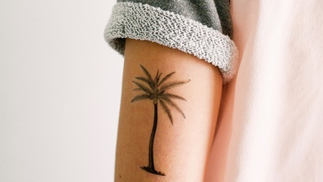 Palm Tree Accessories for Tropical Flair